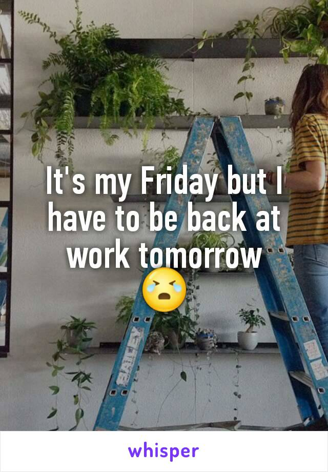 It's my Friday but I have to be back at work tomorrow 😭