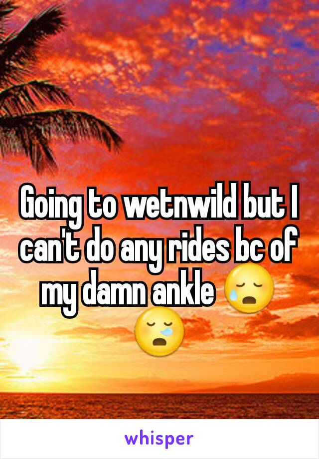Going to wetnwild but I can't do any rides bc of my damn ankle 😥😪