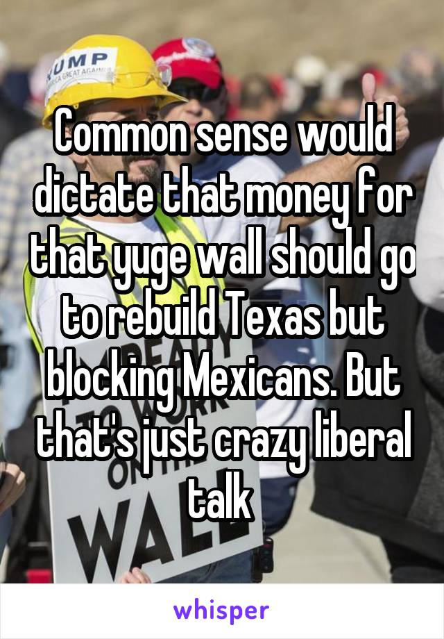 Common sense would dictate that money for that yuge wall should go to rebuild Texas but blocking Mexicans. But that's just crazy liberal talk