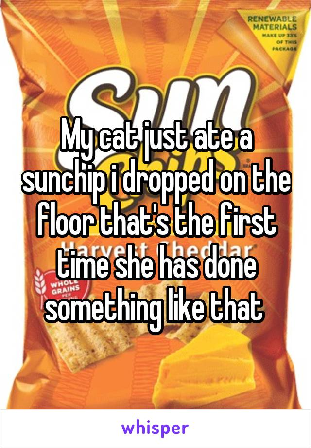 My cat just ate a sunchip i dropped on the floor that's the first time she has done something like that