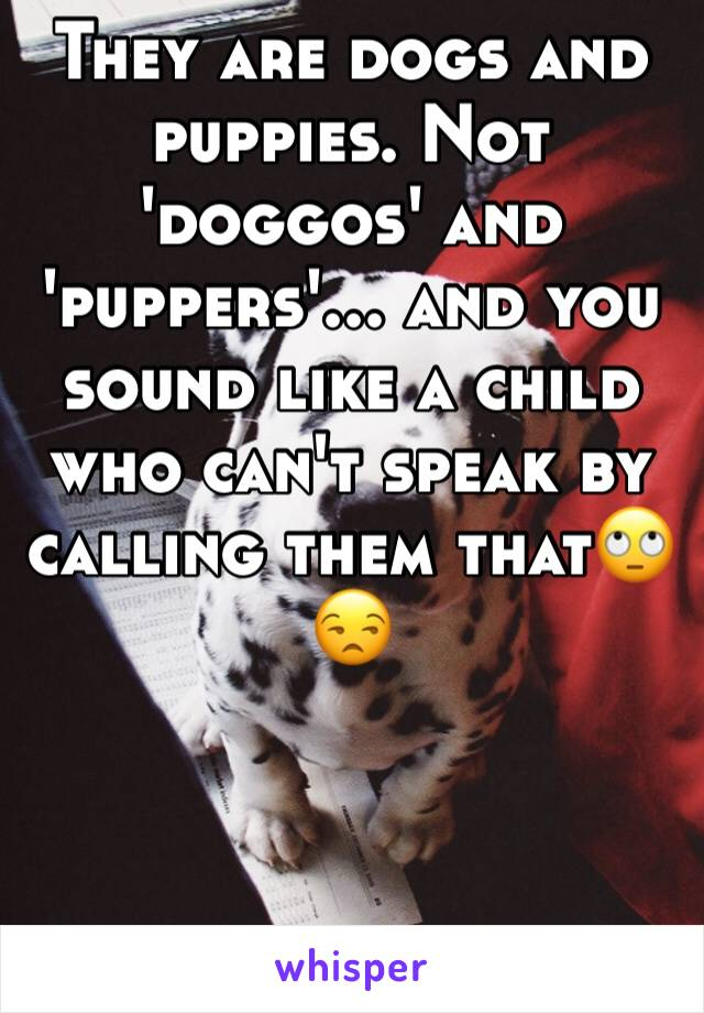 They are dogs and puppies. Not 'doggos' and 'puppers'... and you sound like a child who can't speak by calling them that🙄😒