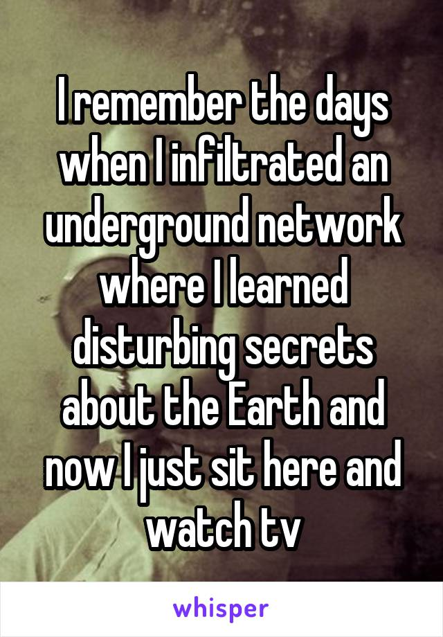 I remember the days when I infiltrated an underground network where I learned disturbing secrets about the Earth and now I just sit here and watch tv