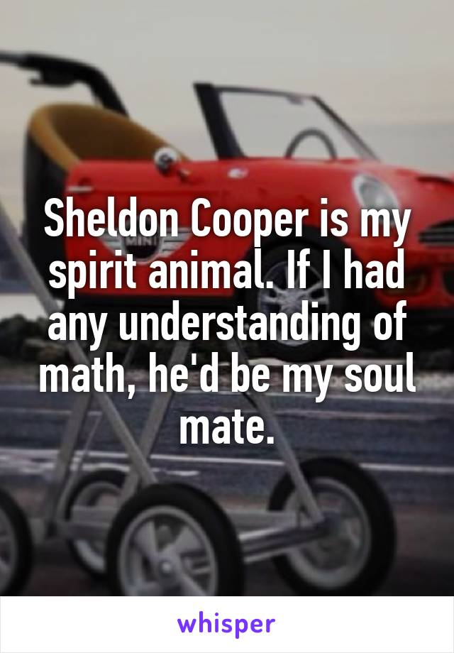 Sheldon Cooper is my spirit animal. If I had any understanding of math, he'd be my soul mate.