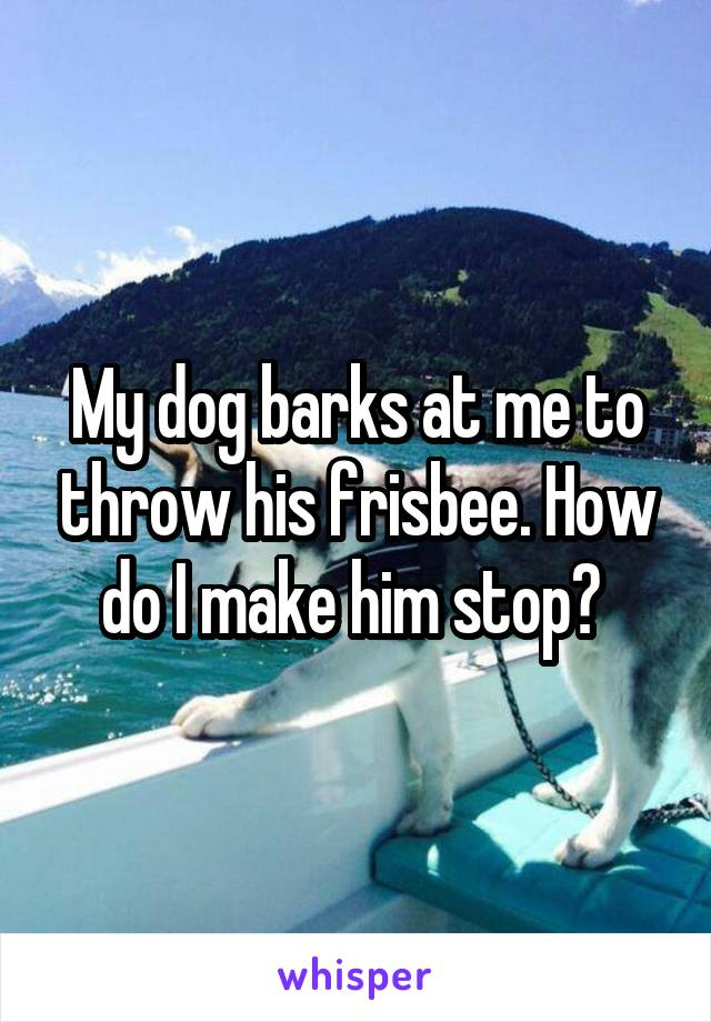 My dog barks at me to throw his frisbee. How do I make him stop?