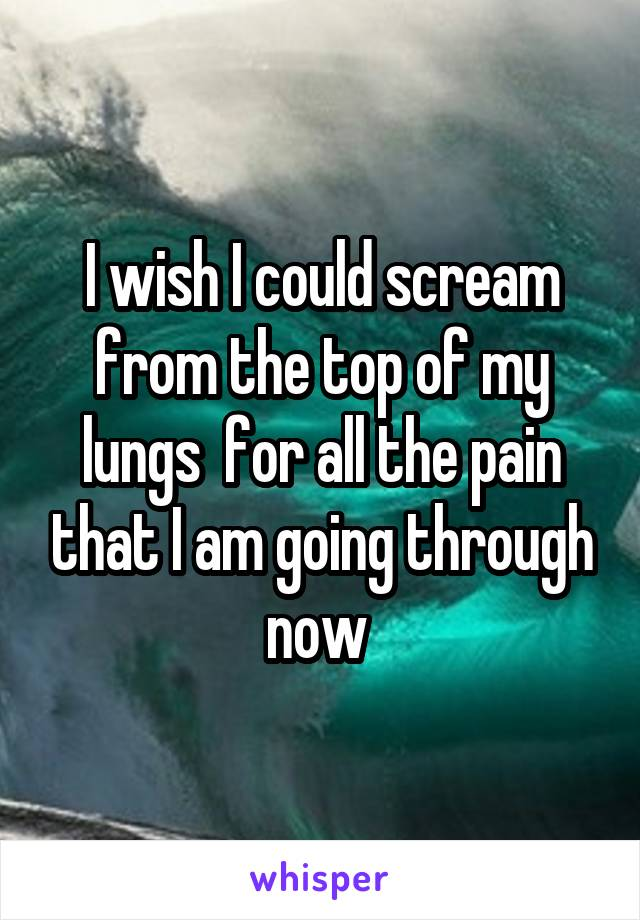 I wish I could scream from the top of my lungs  for all the pain that I am going through now