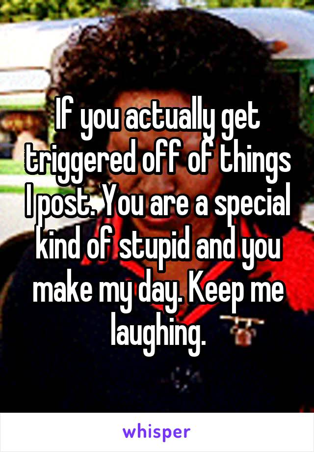 If you actually get triggered off of things I post. You are a special kind of stupid and you make my day. Keep me laughing.
