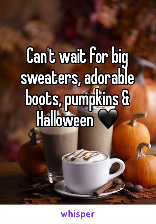 Can't wait for big sweaters, adorable boots, pumpkins & Halloween 🖤