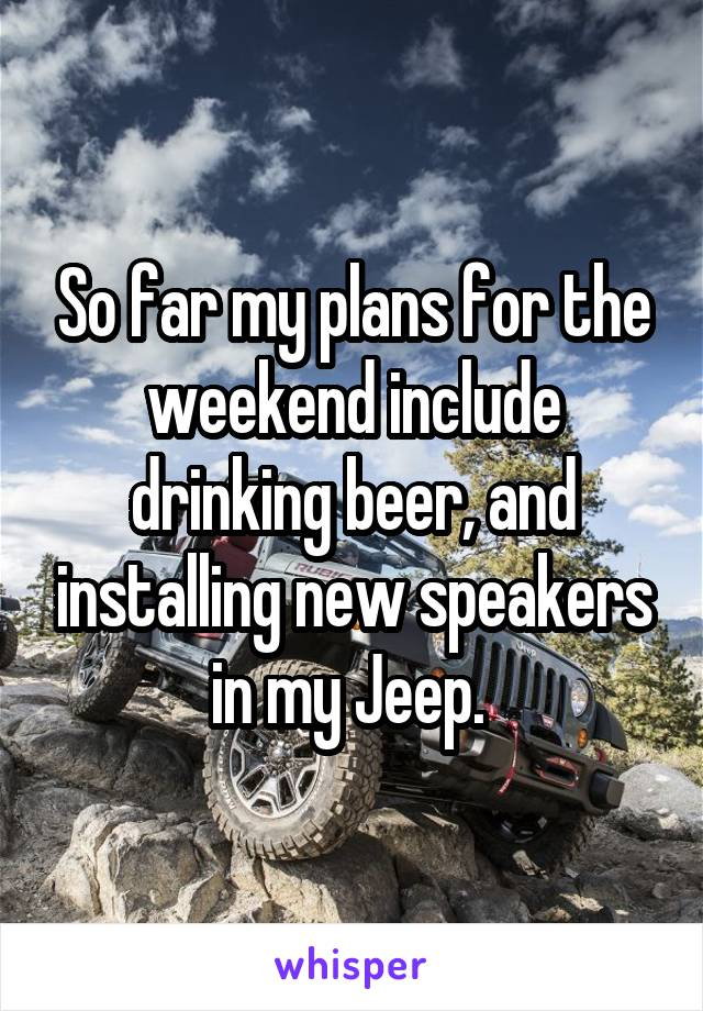 So far my plans for the weekend include drinking beer, and installing new speakers in my Jeep.