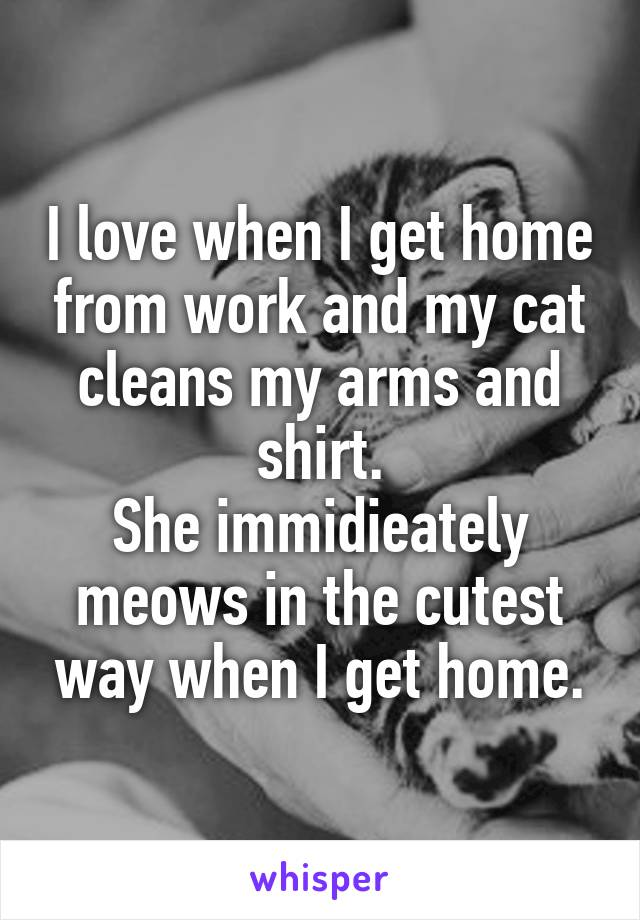 I love when I get home from work and my cat cleans my arms and shirt. She immidieately meows in the cutest way when I get home.