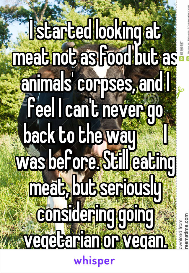 I started looking at meat not as food but as animals' corpses, and I feel I can't never go back to the way        I was before. Still eating meat, but seriously considering going vegetarian or vegan.