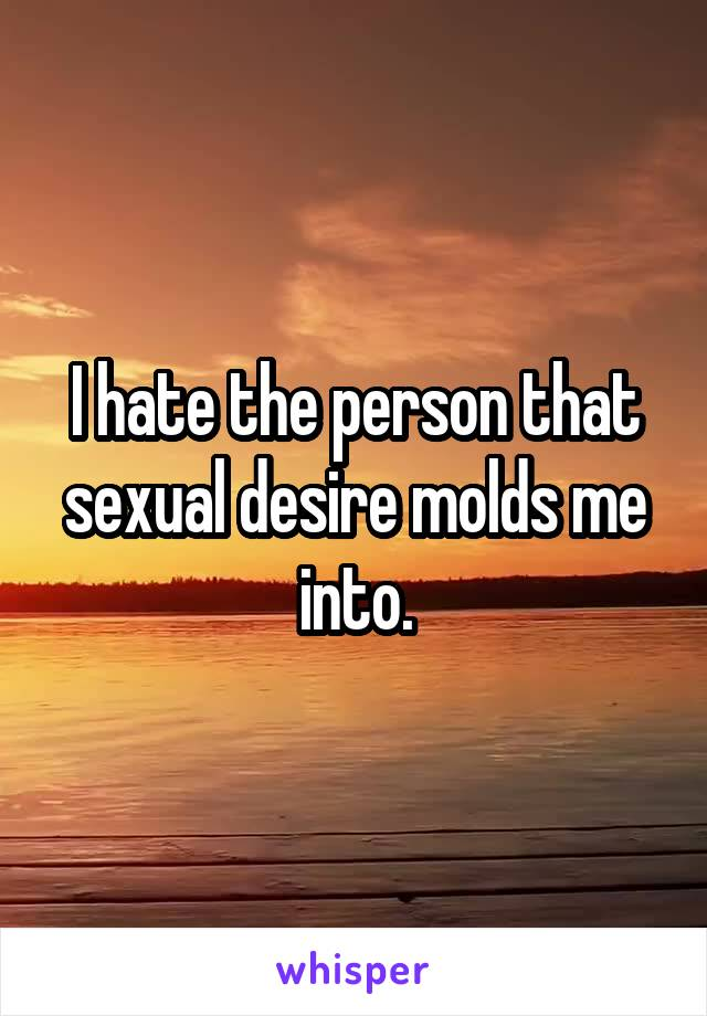 I hate the person that sexual desire molds me into.
