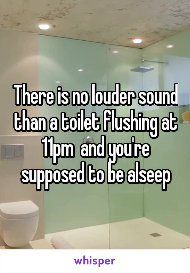 There is no louder sound than a toilet flushing at 11pm  and you're supposed to be alseep