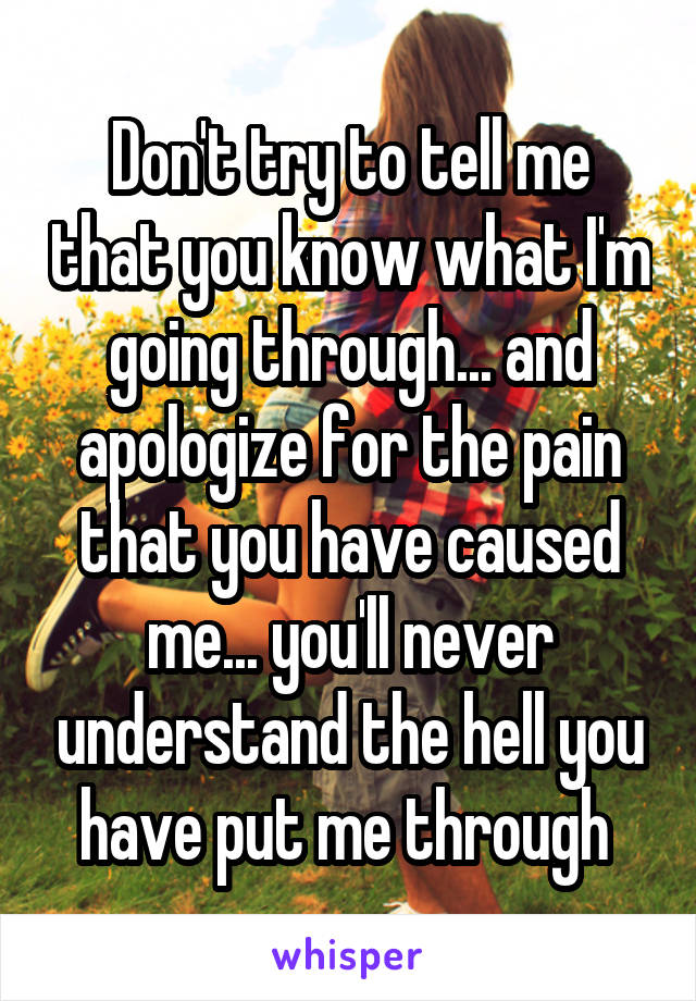 Don't try to tell me that you know what I'm going through... and apologize for the pain that you have caused me... you'll never understand the hell you have put me through