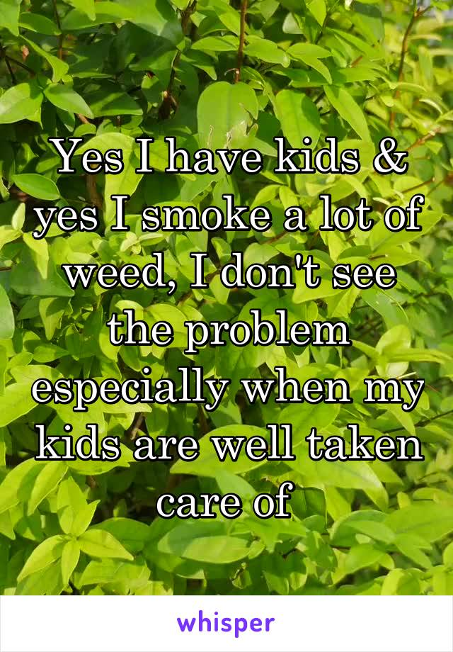 Yes I have kids & yes I smoke a lot of weed, I don't see the problem especially when my kids are well taken care of