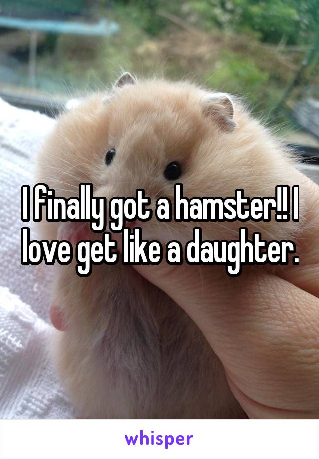 I finally got a hamster!! I love get like a daughter.