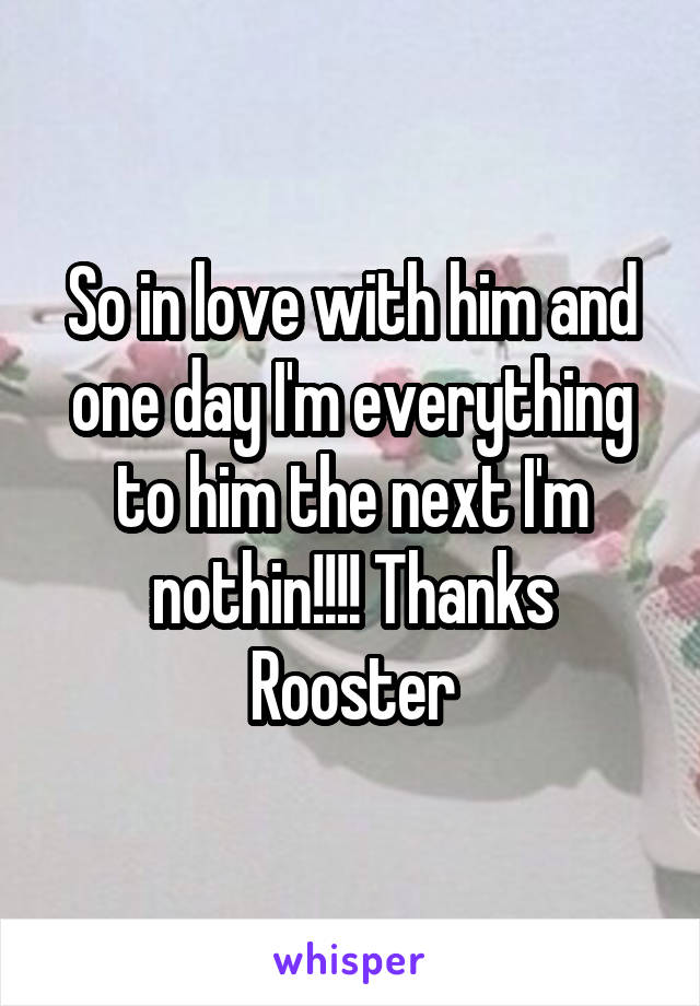 So in love with him and one day I'm everything to him the next I'm nothin!!!! Thanks Rooster