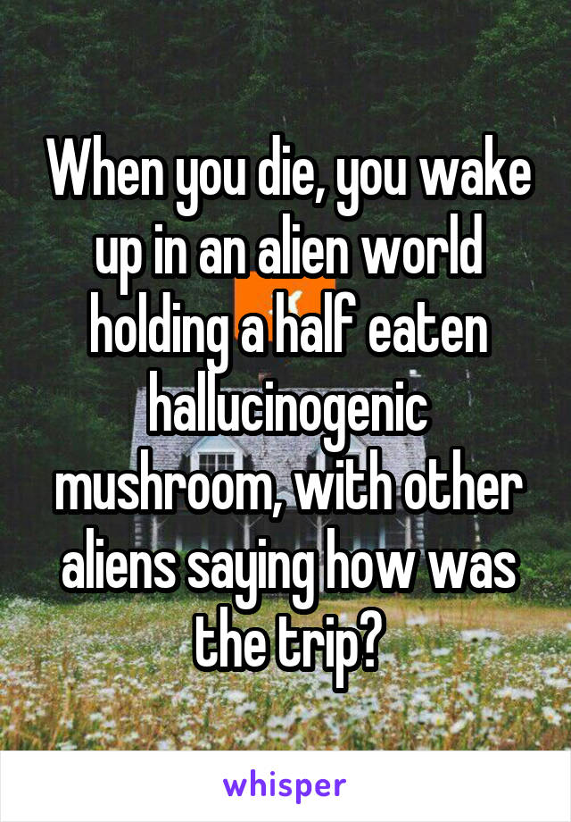 When you die, you wake up in an alien world holding a half eaten hallucinogenic mushroom, with other aliens saying how was the trip?