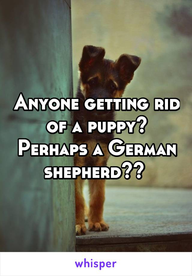 Anyone getting rid of a puppy? Perhaps a German shepherd??