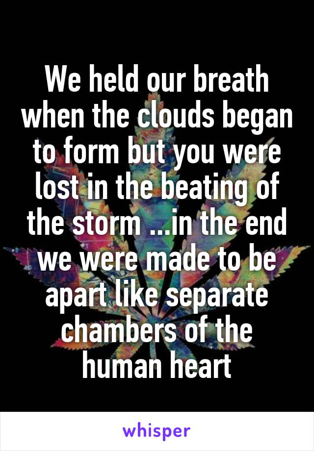 We held our breath when the clouds began to form but you were lost in the beating of the storm ...in the end we were made to be apart like separate chambers of the human heart