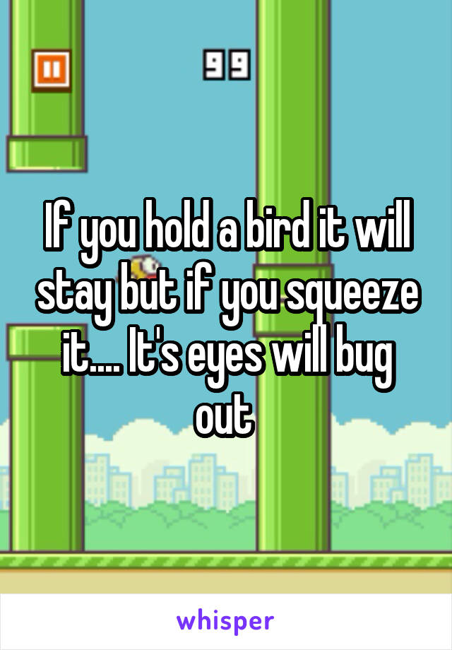If you hold a bird it will stay but if you squeeze it.... It's eyes will bug out