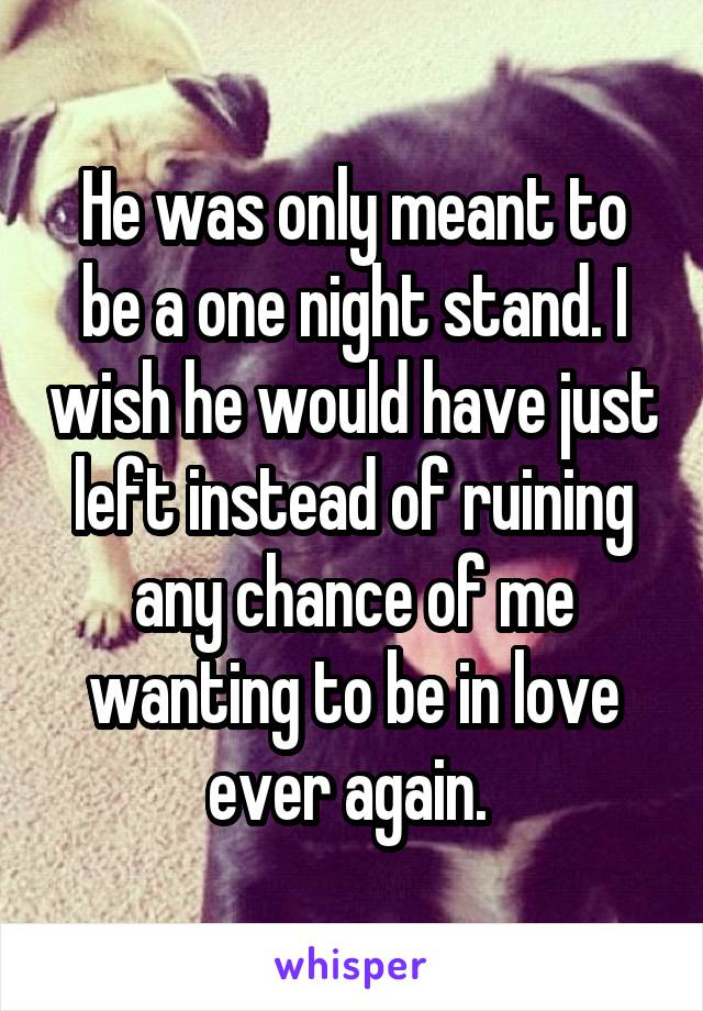 He was only meant to be a one night stand. I wish he would have just left instead of ruining any chance of me wanting to be in love ever again.