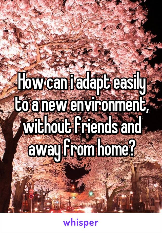 How can i adapt easily to a new environment, without friends and away from home?