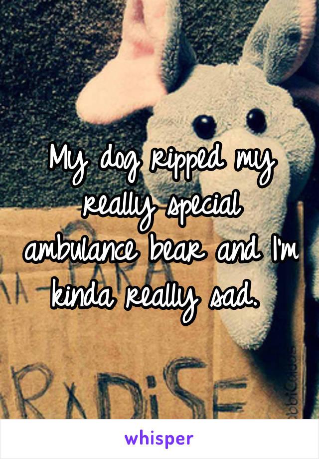 My dog ripped my really special ambulance bear and I'm kinda really sad.