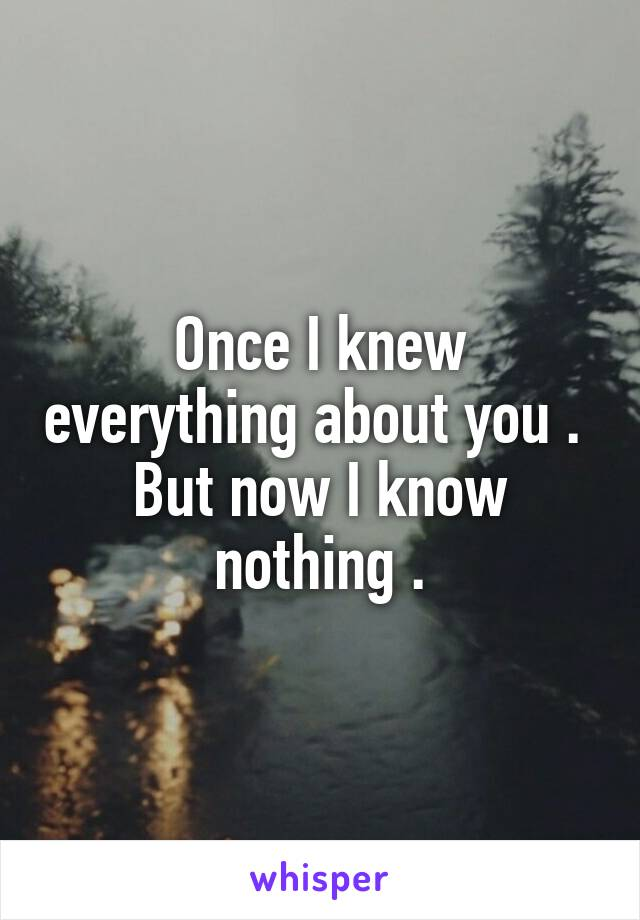 Once I knew everything about you .  But now I know nothing .
