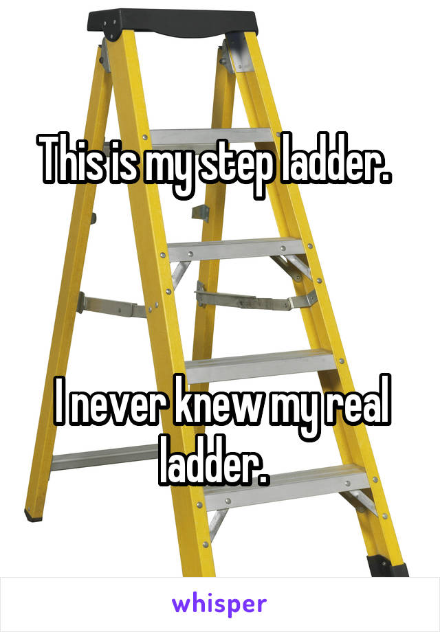 This is my step ladder.      I never knew my real ladder.