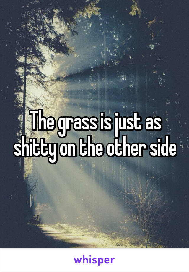 The grass is just as shitty on the other side