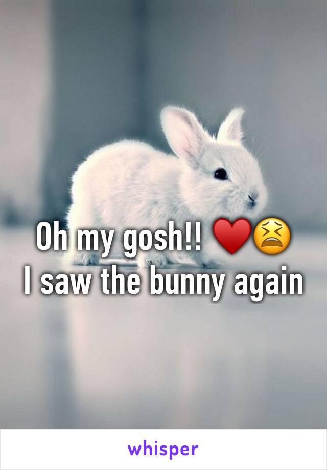 Oh my gosh!! ♥️😫 I saw the bunny again