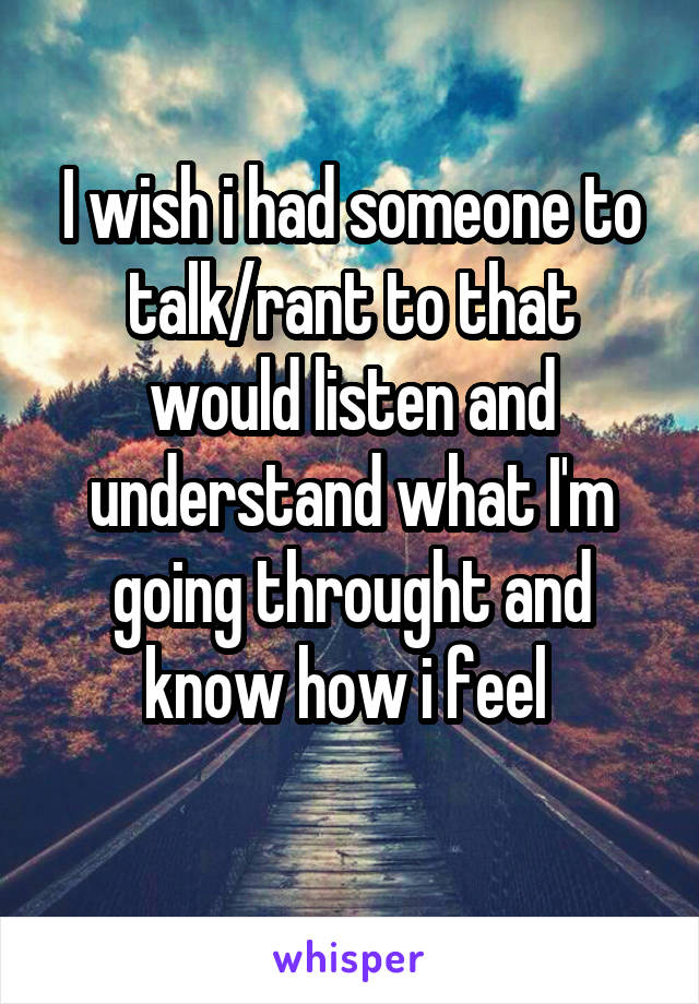 I wish i had someone to talk/rant to that would listen and understand what I'm going throught and know how i feel