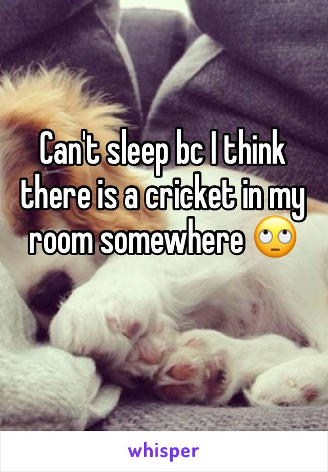 Can't sleep bc I think there is a cricket in my room somewhere 🙄