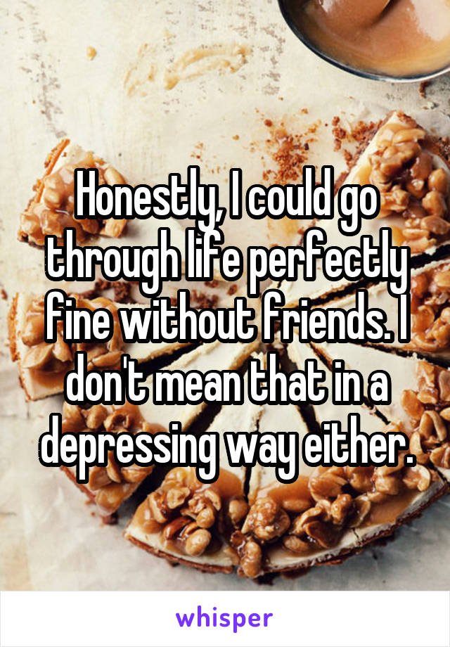 Honestly, I could go through life perfectly fine without friends. I don't mean that in a depressing way either.