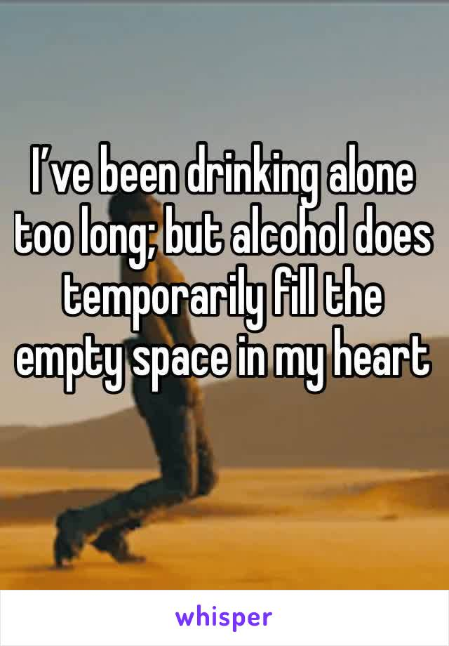 I've been drinking alone  too long; but alcohol does temporarily fill the empty space in my heart