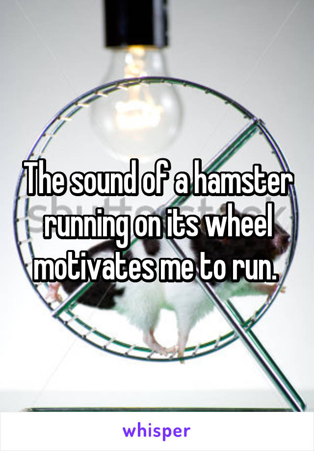 The sound of a hamster running on its wheel motivates me to run.