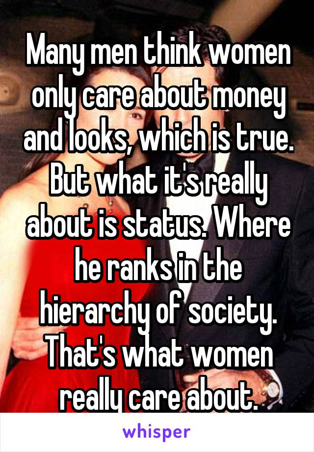 Many men think women only care about money and looks, which is true. But what it's really about is status. Where he ranks in the hierarchy of society. That's what women really care about.