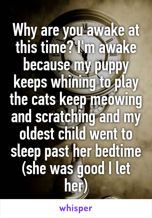 Why are you awake at this time? I'm awake because my puppy keeps whining to play the cats keep meowing and scratching and my oldest child went to sleep past her bedtime (she was good I let her)