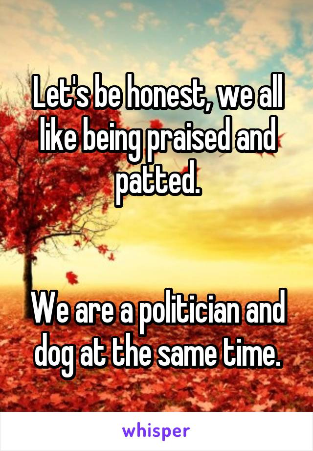 Let's be honest, we all like being praised and patted.   We are a politician and dog at the same time.