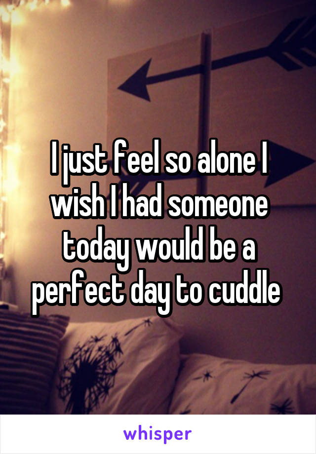I just feel so alone I wish I had someone today would be a perfect day to cuddle
