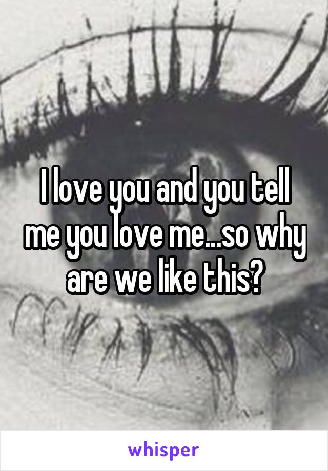 I love you and you tell me you love me...so why are we like this?