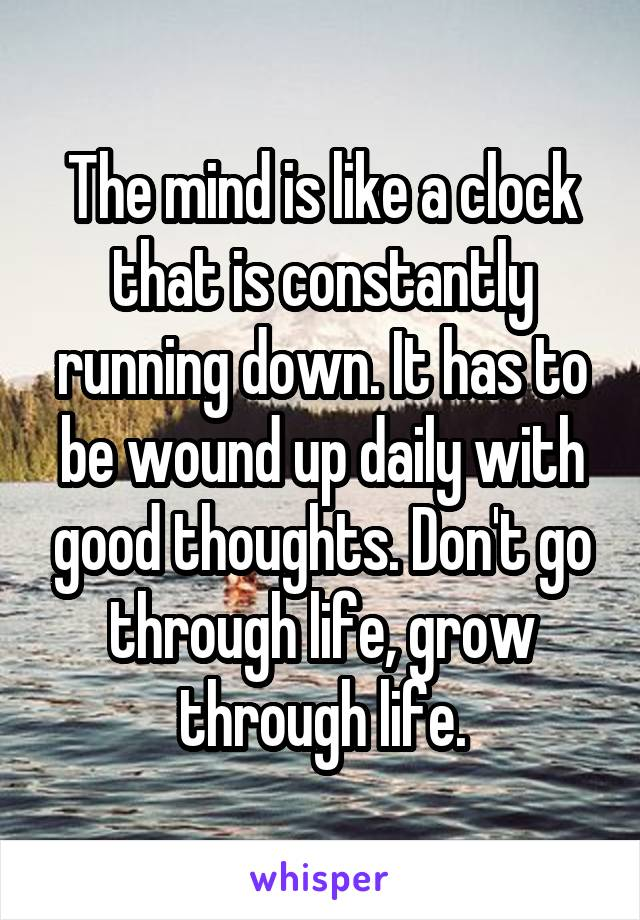 The mind is like a clock that is constantly running down. It has to be wound up daily with good thoughts. Don't go through life, grow through life.