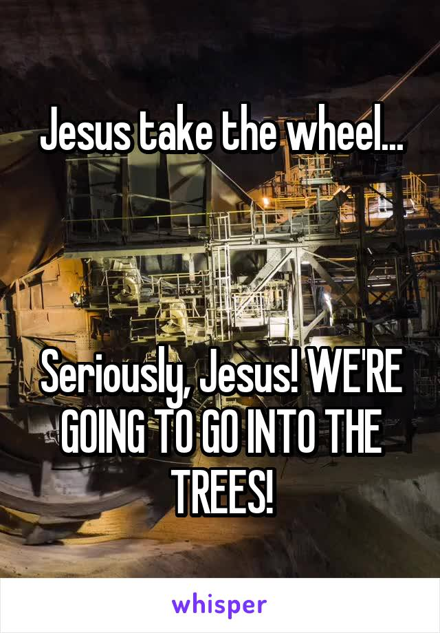 Jesus take the wheel...    Seriously, Jesus! WE'RE GOING TO GO INTO THE TREES!