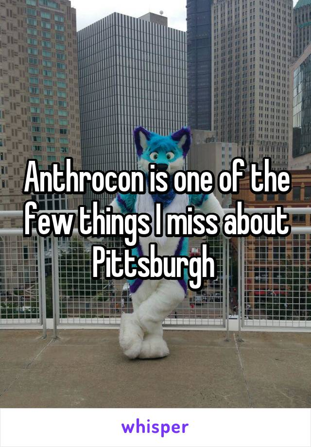 Anthrocon is one of the few things I miss about Pittsburgh