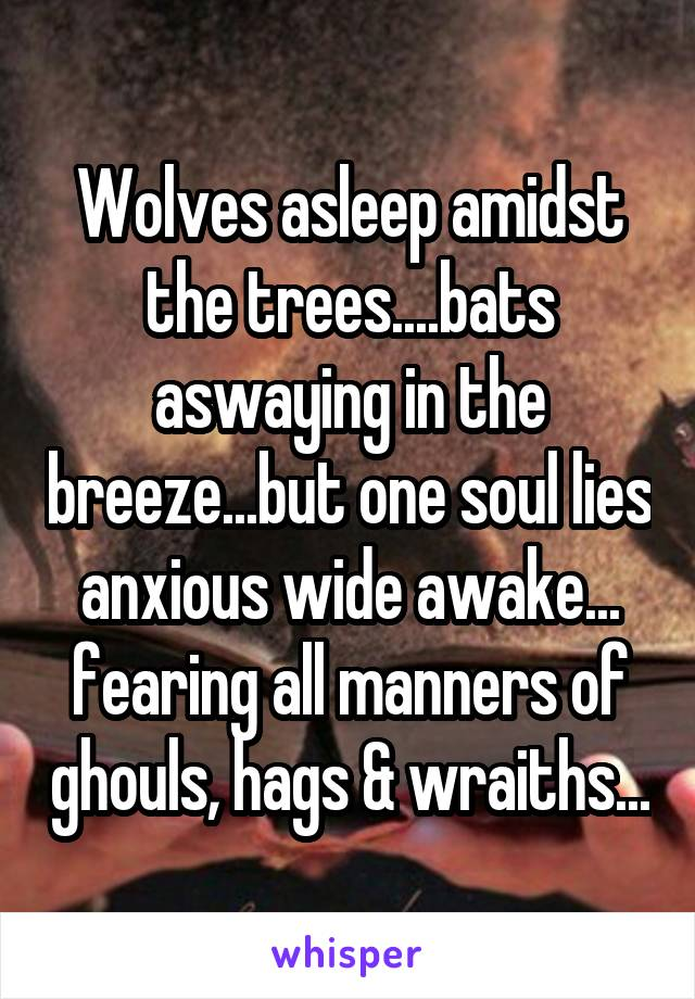 Wolves asleep amidst the trees....bats aswaying in the breeze...but one soul lies anxious wide awake... fearing all manners of ghouls, hags & wraiths...