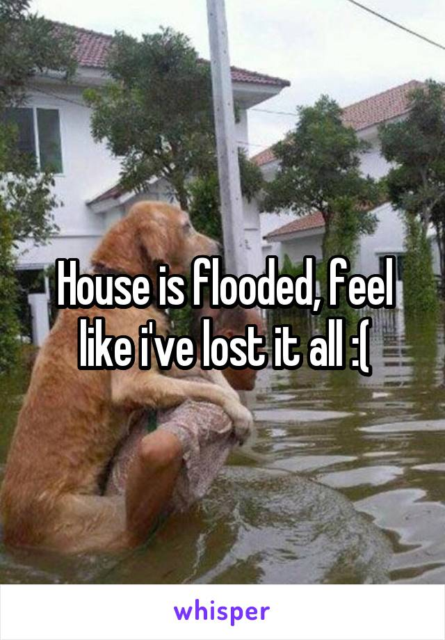 House is flooded, feel like i've lost it all :(
