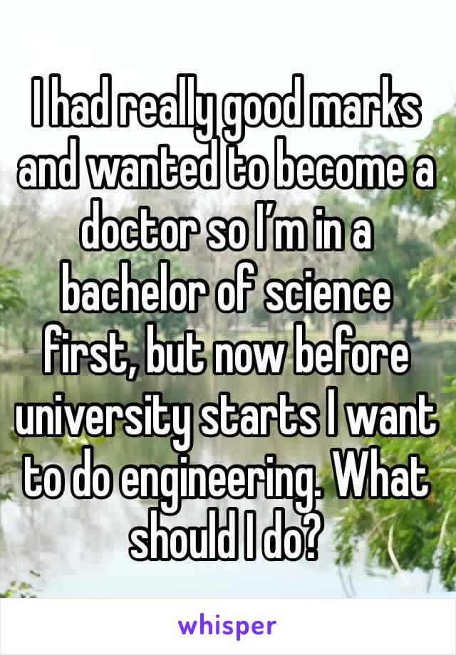 I had really good marks and wanted to become a doctor so I'm in a bachelor of science first, but now before university starts I want to do engineering. What should I do?