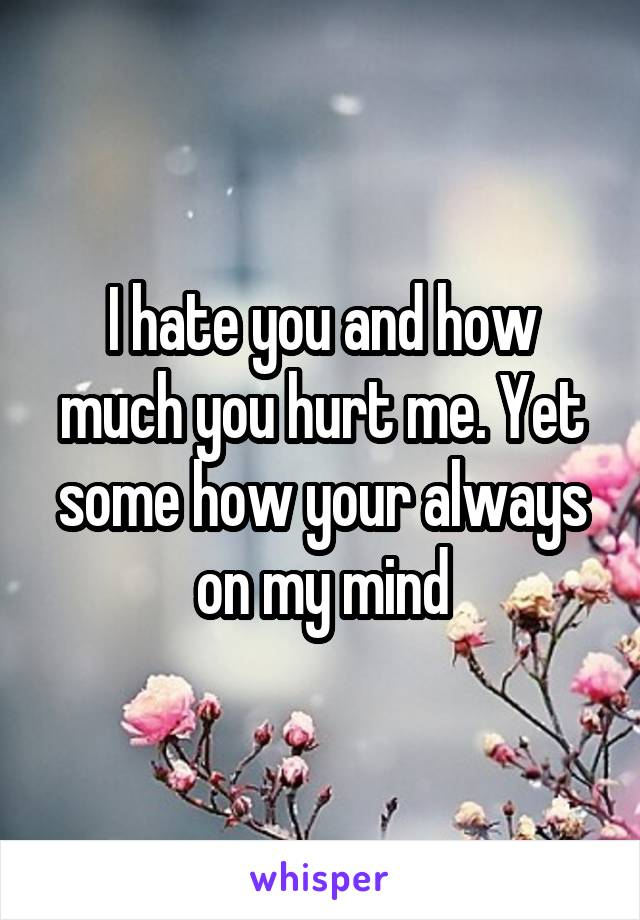 I hate you and how much you hurt me. Yet some how your always on my mind