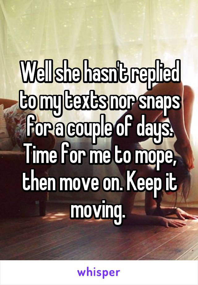 Well she hasn't replied to my texts nor snaps for a couple of days. Time for me to mope, then move on. Keep it moving.