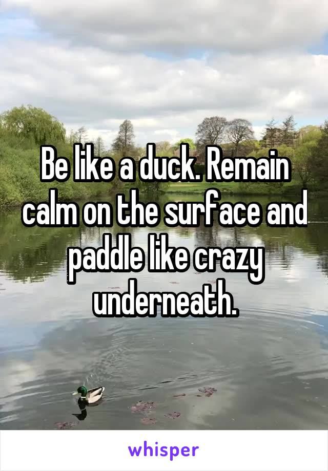 Be like a duck. Remain calm on the surface and paddle like crazy underneath.
